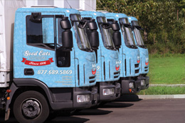 vehicle-graphics-260x173